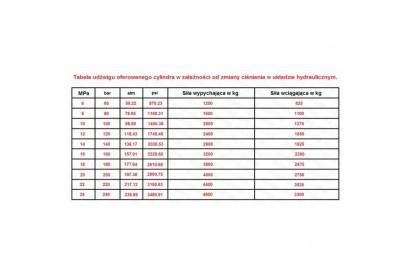Cylinder hydrauliczny 50/28/250 L:480